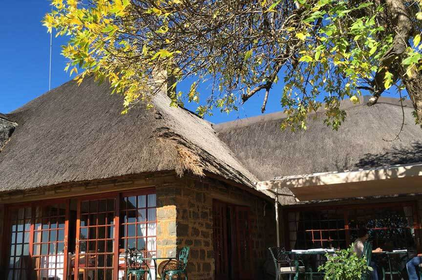 Thatch needing re-roofing